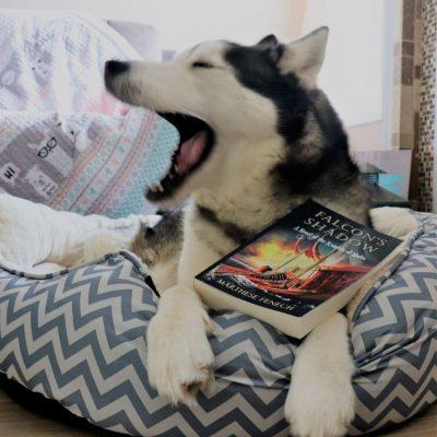 Niko with novel