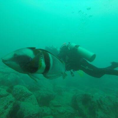 Me scubadiving